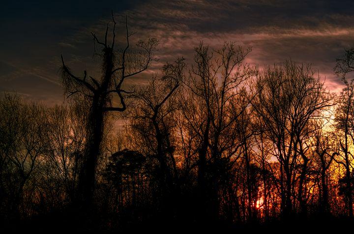 """[Night] of Terror Takes its Toll"" - Sean Toler Photo"