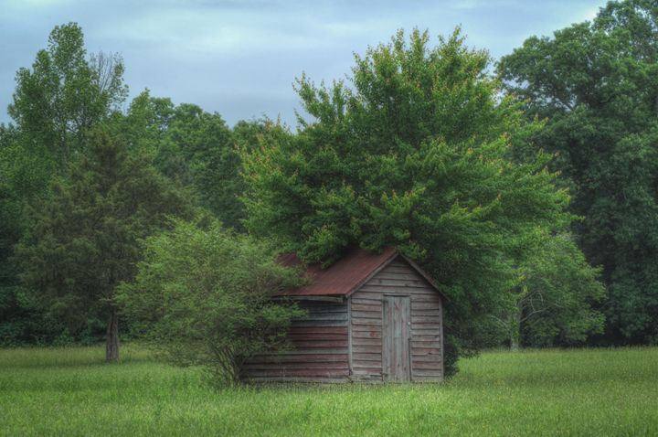The Forgotten Shed - Sean Toler Photo
