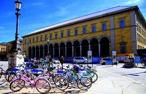 Herd of Bicycles