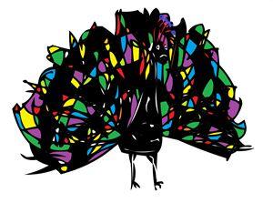 Peacock - Kuba Niezgoda