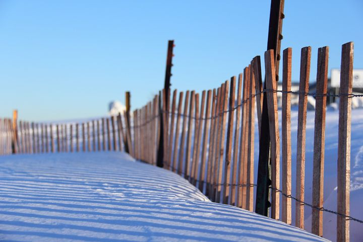Fence & Shadows - Seniha's Gallery