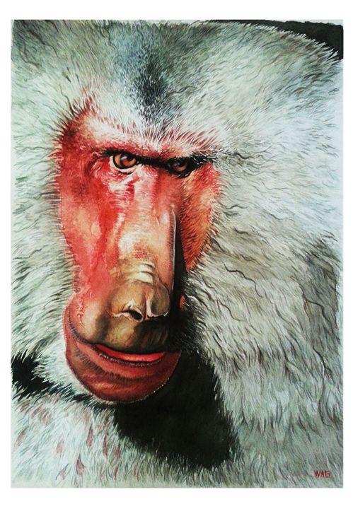 Monkey 4 - Wag