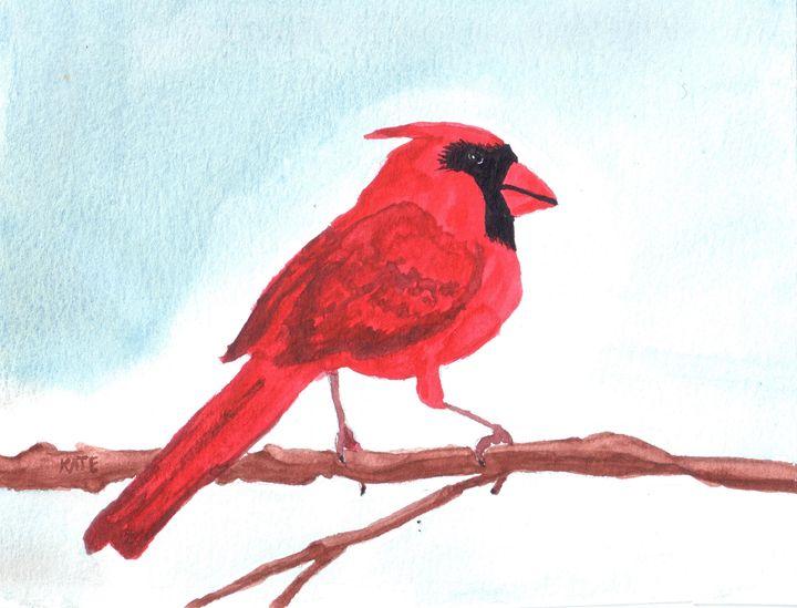 cardinal on branch - SheepyShakeShack