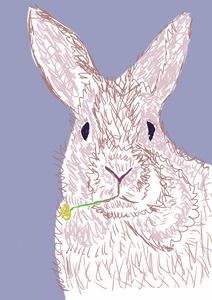 Bunny eating straw