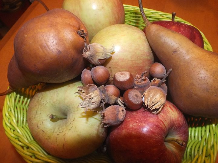 Pears, Apples and Hazelnuts - Vanessa Schlachtaub Bruni