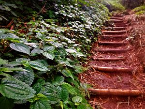 Heaven's Staircase