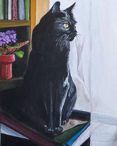 Black Cat with Books