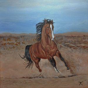 Raging horse