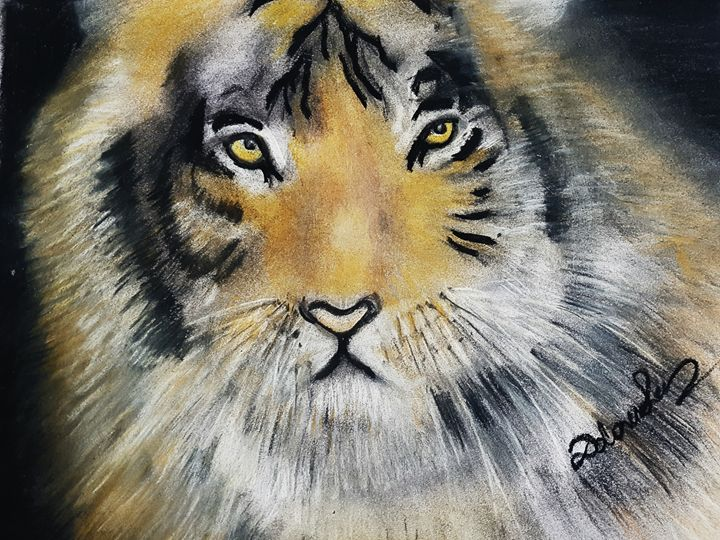Tiger Soft Pastel Drawing - Dolores Lee