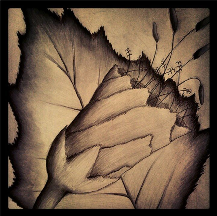 Dark Flower - himal3