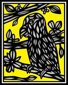 Debarba Parrot Yellow Black