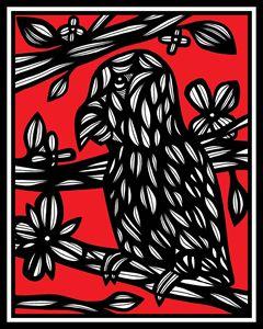 Rozanski Parrot Red White Black