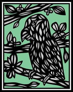 Kowalewski Parrot Green Black