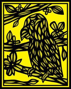 Gotimer Parrot Yellow Black
