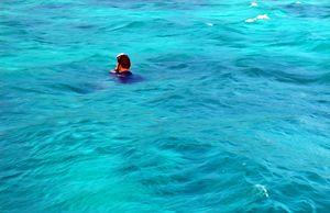 Moorea Snorkeling Adventure