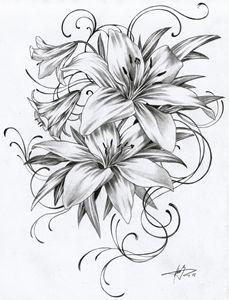 1502 - Lilies
