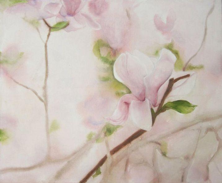 Magnolia - Various