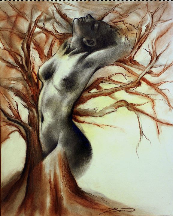 living tree... - JBiro