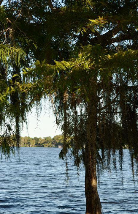 Lake Mills - Mullucan