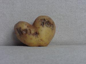 Life is potatoes