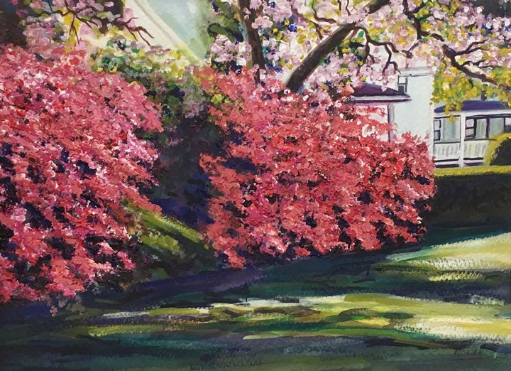Spring Blossoms - Richard Nowak Fine Art