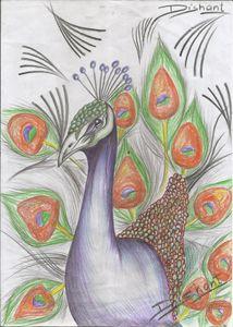 """Incredible Peacock"" - The Art Gallery"