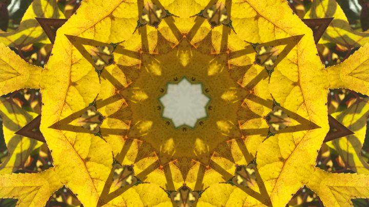 Yellow Kaleidoscope Star - JL Robinson