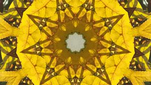 Yellow Kaleidoscope Star