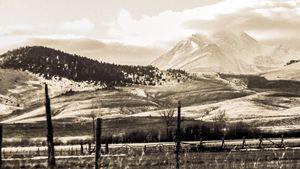 Birch Creek peak