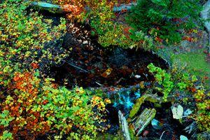 Hyalite's creek