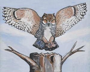 White Owl Landing