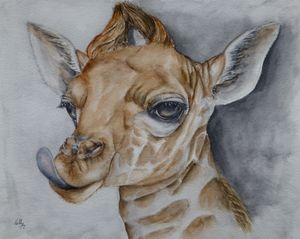 Sassy Little Giraffe - Kelly Mills Paintings