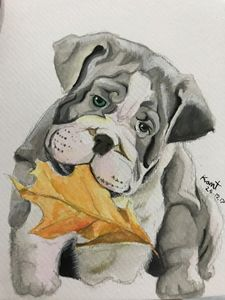Pit bull with leafs