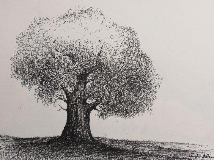 California Live Oak - NatureSpiritnArt