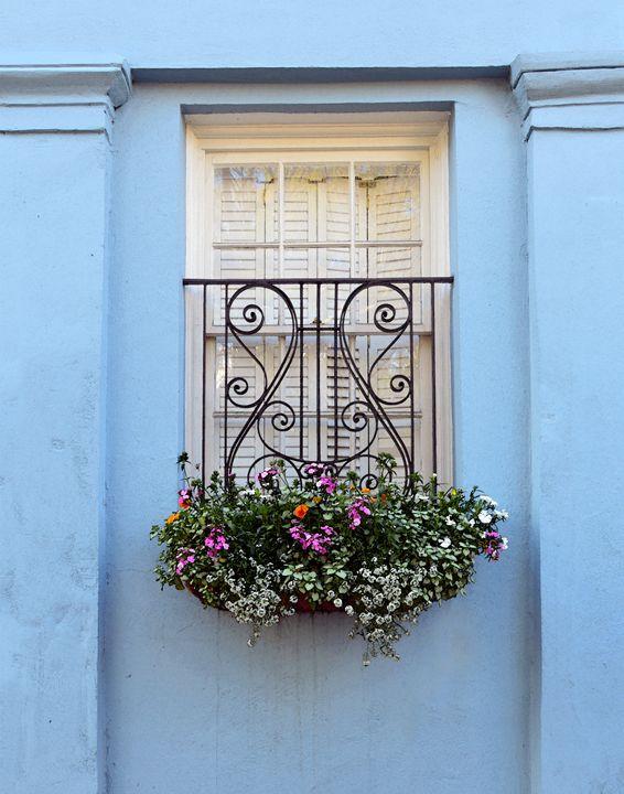 Rainbow Row Flower Box - Catherine Sherman