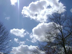 blue sky fresh