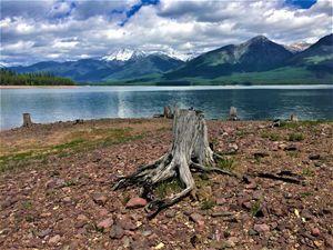 Timeless Montana