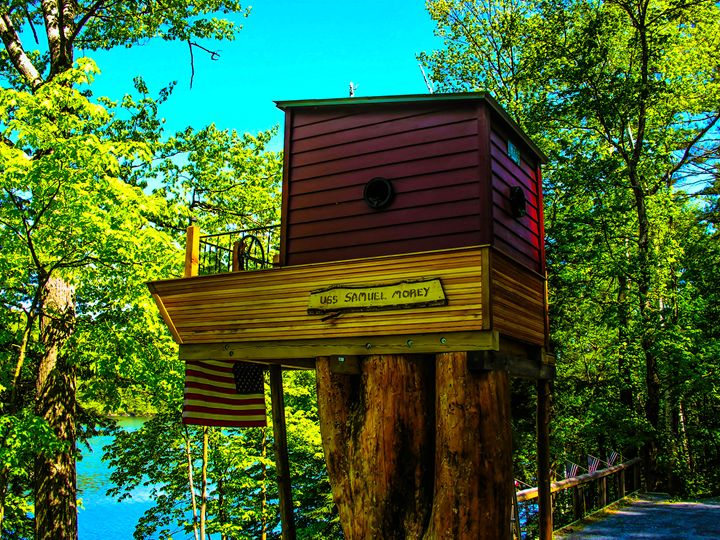 Tree House Boat - Sherm's Photo Service