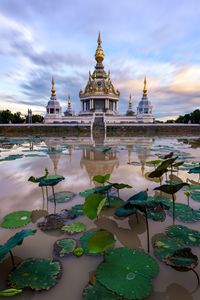 Wat Thung Setthi - Andreas Hagspiel Photography