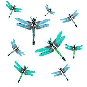 SWARM OF BLUE SUMMER DRAGONFLIES
