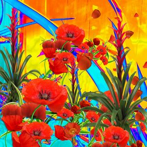 MODERN ORANGE POPPIES ABSTRACT