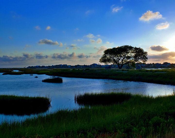 Sunset - Robert Brown Photography
