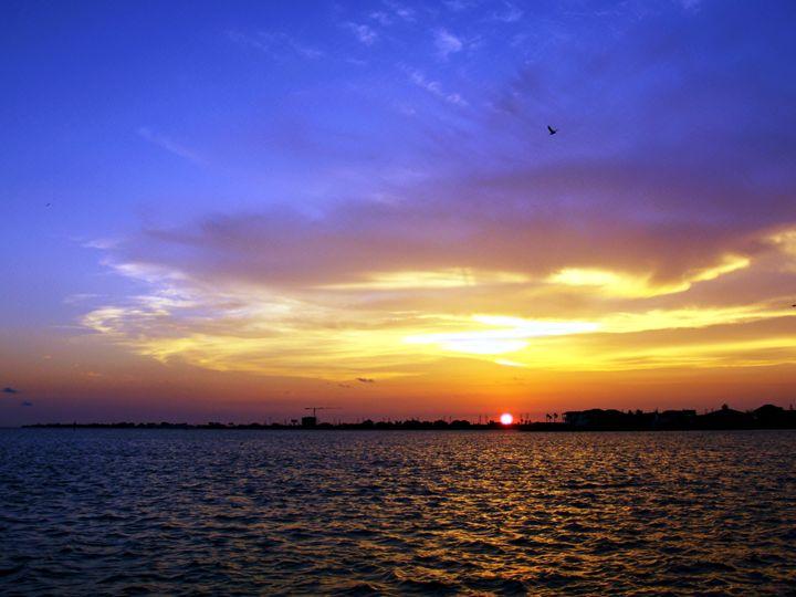 Sunset over Offatts bayou - Robert Brown Photography