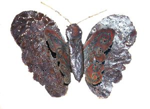 """""""Rustic hand metal Butterfly"""""""