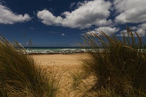 Grass Sand Sea and Sky