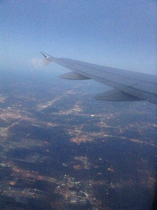 A beautiful flight -  Lorilovesa