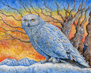 Snow Owl - Nathan Perry Fine Art
