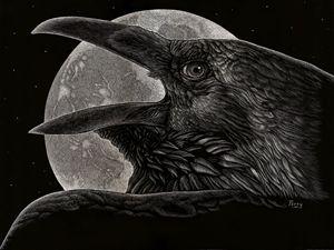 Night Flight - Nathan Perry Fine Art