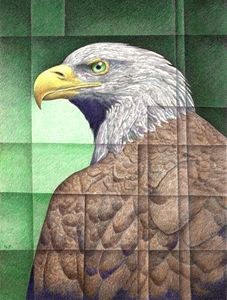 Eagle Eye I - Nathan Perry Fine Art