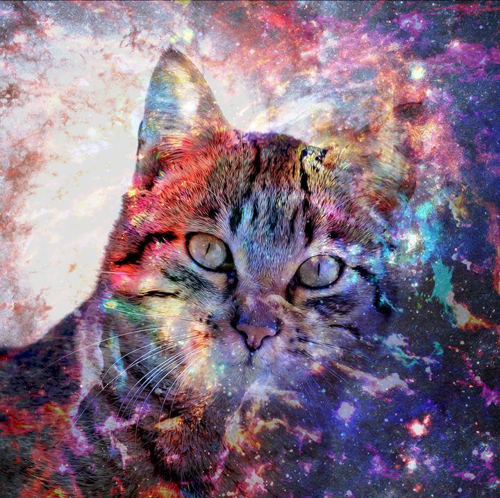 SpaceCat - Good Stuff